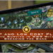 F2P and Low Cost Play: How to Survive in WWR Without Breaking the Bank